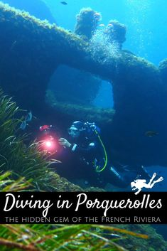 Scuba Diving Certification, Best Scuba Diving, Marine Conservation, Parc National, Snorkelling, Turquoise Water, French Riviera, South Of France, Underwater Photography