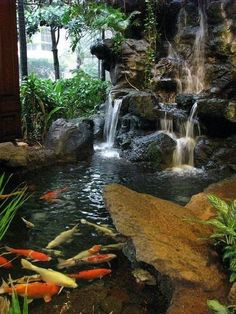 Garden Pond Design Ideas - Discover some of the awesome home garden ponds that make a calm retreat in our article this time. Small Garden Pond Design A small Fish Pond Gardens, Ponds For Small Gardens, Koi Fish Pond, Fish Ponds Backyard, Backyard Water Feature, Koi Ponds, Japanese Water Gardens, Japanese Koi, Indoor Pond