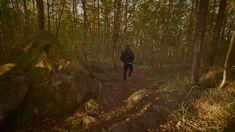 Places with scenic views in the Jyväskylä Region: Paljaspää, production: Eemeli Nättinen