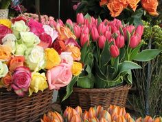 French flower market