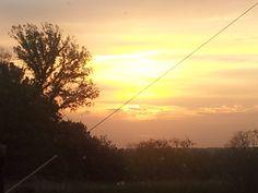Random Pictures: Good morning sunshine