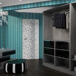 Closets   Anthonyu0027s Closets Shower Doors And More .   Closet Organization    Pinterest   Custom Closets, Closet Organization And Shower Doors