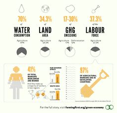 Agriculture and the green economy   Down To Earth