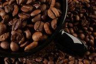 Relatório prevê fim da diferença de preço entre café arábica e conilon