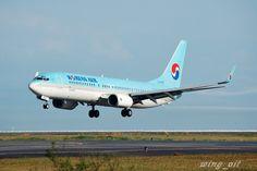 KOREAN AIR - Boeing 737-800