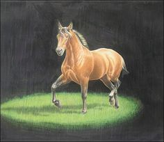 Lots of drawing / sketching tutorials on this website. Drawing Tips: Learn to Sketch and Draw Better with these Tutorials  Tags: still life animals colored lighting shading sketch draw art digital horse pets dogs easel pencil charcoal