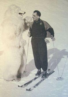 carlo mollino polar bear