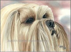LHASA APSO Dog 15x11 Giclee Giclee Watercolor Print. $40.00, via Etsy.
