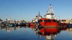 NixPixMix: FREMANTLE FISHING HARBOUR