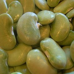 Want to grow some? Growing Lima Beans, Growing Greens, Garden Projects, Garden Ideas, Bountiful Harvest, Organic Cleaning Products, Butter Beans, Grow Your Own Food, Growing Vegetables