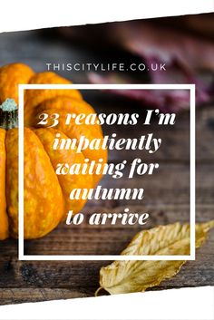 Hot choc, halloween movies and circle scarves for days. I'm antsy waiting for autumn, so here are the reasons why I want it to just bloody turn up already.