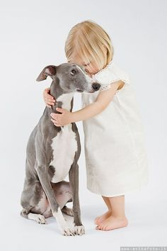 {so cute! I think that's a whippet, smaller version of a greyhound - but I'm not sure. Love My Dog, Puppy Love, Animals For Kids, Cute Baby Animals, Animals And Pets, Tier Fotos, Italian Greyhound, Cute Kids, 3 Kids