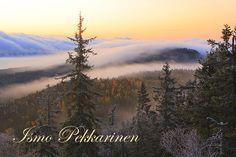 Maisema Kolilta. Landscape in Koli.Photo Ismo Pekkarinen #koli #luonto #finland #nature #landscape