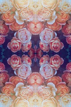 trippy psychedelic flowers baked-in-wonderland Background Pictures, Travel Light, Pics Art, Pretty Flowers, Beautiful Roses, Floral Flowers, Textures Patterns, Floral Patterns, Collage Art