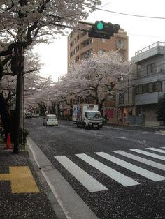 i'm lov kyungsoo Aesthetic Japan, City Aesthetic, Aesthetic Backgrounds, Aesthetic Wallpapers, Life Is Beautiful, Beautiful Places, Personajes Studio Ghibli, Favim, Digimon
