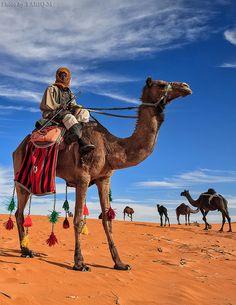 The Herdsman. Saudi Arabia