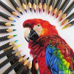 #artwork #art #draw #portrait #painting #illustration #dessin #acrylic #artistic #realism #realistic #3d #animal #animalart #bird #oiseau #perroquet #colorful #pencil