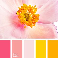 Color Palette Resource that helps you in color selection, specially created with this aim; it is the generator of inspiration. Paint Color Schemes, Colour Pallette, Bedroom Color Schemes, Color Combos, Bedroom Colors, Pink Palette, Paint Colors, Bedroom Ideas, Orange Pink Color