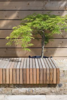 Garden seating with brick and timber bench gardendesign timber bench seating bench brick garden gardendesign seating timber easy perfect garden bench! Timber Bench Seat, Garden Bench Seat, Diy Garden Seating, Wooden Garden Benches, Outdoor Seating, Outdoor Decor, Outdoor Spaces, Brick Garden, Garden Planning