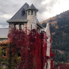 Nelson,BC Vancouver Bc Canada, Vancouver City, Immigration Canada, O Canada, Abandoned Mansions, Best Places To Travel, Rest Of The World, Countries Of The World, Hot Springs