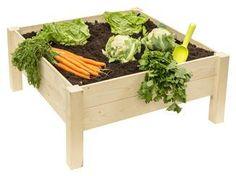 Opbergkasten gamma ~ Loungestoel capri wit tuinstoelen tuinmeubelen tuin gamma