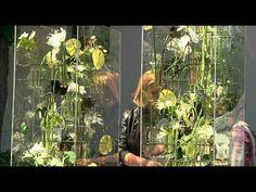 Christina Hannewald - Landesmeisterin der Floristen Bayern - YouTube