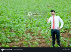 Indian agronomist at cotton field Photo Agriculture Photos, Cotton Fields, Icon Pack, Model Release, Photo Illustration, Free Design, Vector Free, How To Become, Photoshop