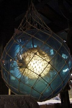 Glass float lamp with puffer inside! I have got to make one of these!