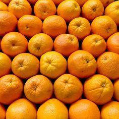 Citrus love. #orange #oranges