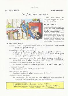 French Expressions, French Education, French Grammar, Teaching French, Home Schooling, Learn French, French Language, Comprehension, Science
