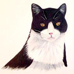 Cat Acrylic on Canvas