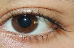 Ideal Lash Length Follows One-Third Rule - DISCOVERY NEWS #Lashes, #Human