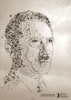 Drawing With Mosquitos: Malaria Kills More Than Hitler, Stalin, Tanks & Bombs
