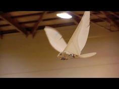 How to make Ornithopter Pteranodon Kit. - YouTube