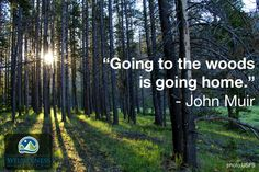 """""""Going to the woods is going home."""" - John Muir  I <3 trail running"""