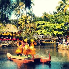 Polynesian Cultural Center, Hawaii. Such an amazing, interesting, and educational place to visit! Best pineapple I've ever eaten too!