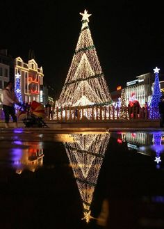 Christmas decorations and lights, Varna east, Sofia, Bulgarian! Holiday light reflections around the world! Christmas In Europe, Christmas In The City, Beautiful Christmas, Christmas Holidays, Magical Christmas, Holiday Lights, Christmas Lights, Christmas Ornaments, Light Decorations