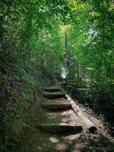 Felder, Railroad Tracks, Switzerland, Stairs, Stair Case, Places, Nature, Travel, Switzerland Destinations