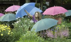 Chrissie D'Esopo places umbrellas over flowers in her garden in 2009.