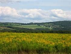 Aroostook County - Yahoo Image Search Results