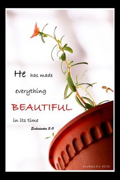 In His Time Ecclesiastes 3:11  He has made everything beautiful in its time. He has also set eternity in the hearts of men; yet they cannot fathom what God has done from beginning to end.