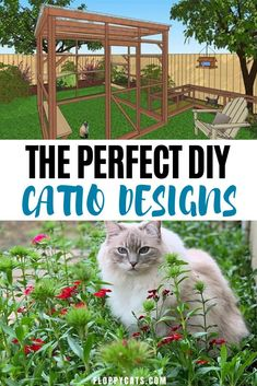 The Best Catio Ideas | Catio Cats | Catio Plans | Catio Plans How to Build | Catio Plans DIY | Catio For Cats Ideas | Catio Ideas Outdoors Small | DIY Catios For Cats | DIY Catio Ideas on a Budget | How to Make a Catio for Cats | Animal and Pet Supplies | Cat Tips | Cat Supplies | Outdoor Cats Cute Cats And Kittens, Cool Cats, Cute Cat Names, Cat Food Brands, Best Cat Litter, Cats Outside, Cat Fountain, Best Cat Food, Cat Products