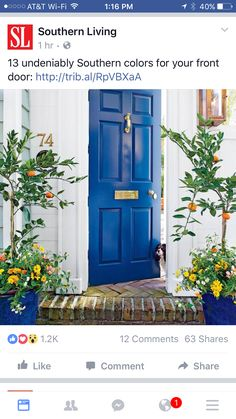 Here are the best feng shui front door colors for your front door. Know how to use color to create a strong and beautiful front door with feng shui. Door Design, Front Entrances, Painted Doors, Painted Front Doors, Beautiful Doors, Suburban House, Front Door Styles, Front Porch Plants, Doors
