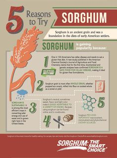 #Sorghum is an ancient grain and was a foundation in the diets of early American settlers.