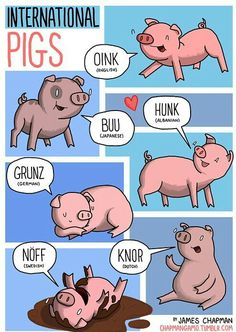 International pigs