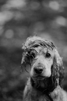 Caught in the rain.