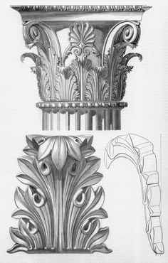 Gli Stili dell'Ornamento (1882) by Camilo Boito.  Top capital is from the Temple of Apollo at Didyma (present day Turkey), the bottom acanthus leaf is from the Temple of the Winds in Athens.