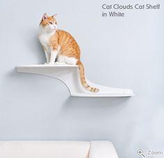 Refined Feline Cat Clouds Cat Shelf