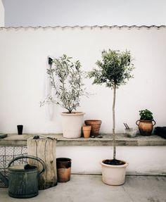 Färgsättning på terrassen