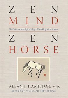 Lessons From A Life With Horses This collection of over 100 essays  treats working with horses as a metaphor for personal, professional and spiritual growth. The results showcase wisdom on such universal themes as leadership, motivation, ambition, love and human transformation. WINNER OF: 2017 Benjamin Franklin Silver Award, 2017 Ippy Silver